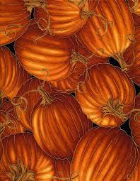 Metallic Gold Pumpkin Fabric, Timeless Treasures Harvest CM6443 ... & $3.00+ Adamdwight.com