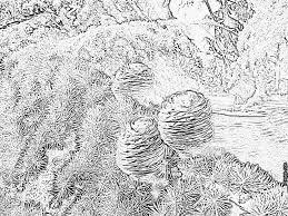 Coloriage Trio De Pommes De Pin Imprimer Pour Les Enfants Dessin
