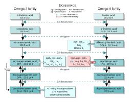 Omega - 3 -Fettsaüren