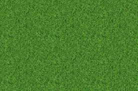 grass texture hd. Perfect Texture Grass Texture Backgrounds With Hd A