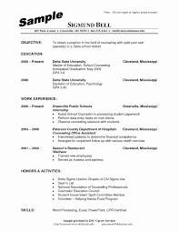 Summer Camp Counselor Resume Elegant Sample Guidanceunselor Resume