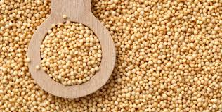 the nutrition of amaranth
