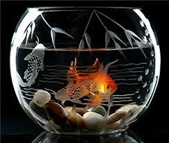 Decorative Betta Fish Bowls decorative etched glass fish bowl glassware Pinterest Glass 40
