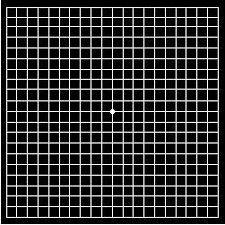 Eye Grid Chart Amsler Grid Looks Like Graph Paper