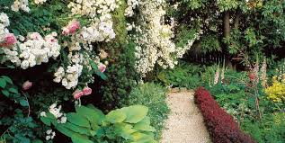 Small Picture Small Garden Design Ideas Garden Design
