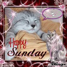 Image result for happy sunday gifs