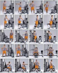 Multi Gym Wall Chart Gym Chest Workout Chart Pdf Kayaworkout Co