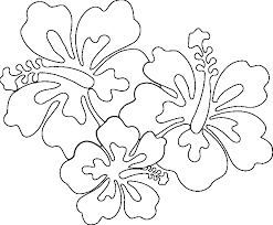 Small Picture Tropical Flower Coloring Pages Getcoloringpages Com Coloring