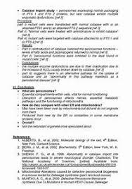writing a five page essays formatting essay tips writing a five page essays