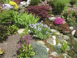 If you have bushes or taller plants in your garden, rocks can still make an