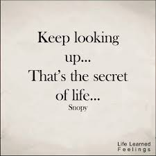 The Secret Quotes Simple Famous Success Quotes And Sayings Keep Looking Up That's The