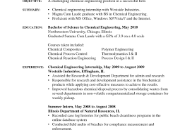 Free Resume Assistance Eye Catching Resume Personal Activities Tags  Activities Resume Free Resume Assistance