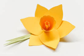 Daffodil Paper Flower Pattern How To Make 3d Cricut Cardstock Flowers Step By Step Instructions