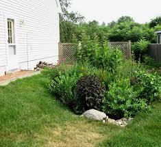 Small Picture Rain Gardens Cooperative Extension