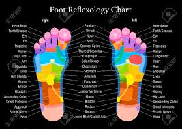 Foot Organ Chart Foot Reflexology Chart With Accurate Description Of The Corresponding