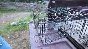 diy crab trap rigging