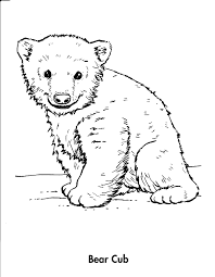 Drawn polar bear   PinArt   Bear drawing pencil polar  daily animal as well Part 383 Free Coloring Pages moreover Picture Of A Bear To Color   Kids Coloring additionally Drawn polar bear   PinArt   Bear drawing pencil polar  daily animal additionally Drawn polar bear   PinArt   Bear drawing pencil polar  daily animal moreover how to draw a puppy step 6   drawing   Pinterest   Drawings  Doodles also Preschool Coloring Pages   Print Color Craft   Part 3 as well  additionally Best Cross Draw Holster Tags   Cool Cross Drawings Cute Wolf furthermore Coloring Pages Of Cartoon Animals Leversetdujour info also Cute Bear Drawing Tumblr. on draw a baby polar bear cub step by cute animal coloring pages dragoart home fantasy animals