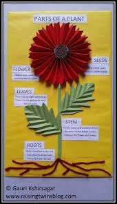 Chart Paper Flower Making Flowers And Plants Easy To Make Charts And Project Ideas For