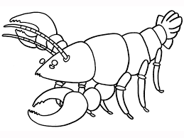 Small Picture Epic Lobster Coloring Page 72 In Free Coloring Book With Lobster