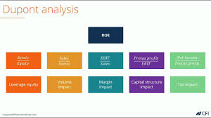 Dupont Analysis Learn How To Create A Dupont Analysis Model