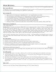 Visual Merchandising Resume Sample Visual Stylist Resume Visual