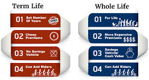 Why do seniors consider buying life insurance plans? State Farm Life Insurance Review Quickquote