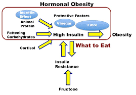 Insulin Resistance Food Chart What And When To Eat To Reduce Insulin Diet Doctor