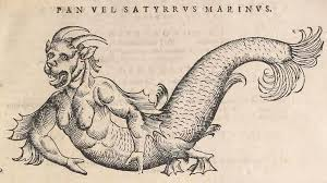sea monster drawing. Fine Drawing Five U201cRealu201d Sea Monsters Brought To Life By Early Naturalists  Science  Smithsonian Throughout Monster Drawing I