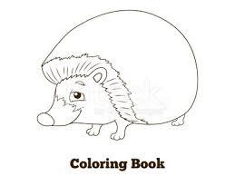 Dei Cartoni Animati Animale Riccio Foresta Libro Da Colorare Per