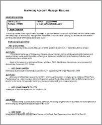 Account Director Resume Emelcotest Com