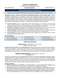 resume of mis executive resume online builder mis executive cover letter american ideals essay influential awesome resume of mis executive ideas simple resume office transform mis executive resume