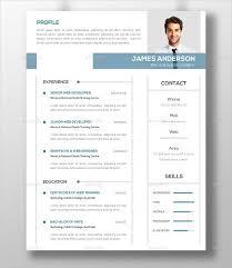 Modern Resume Template 2013 Modern Professional Resume Resume Sample