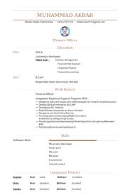 Finance Officer Resume samples