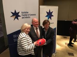 """Dianne Smith on Twitter: """"My day started and ended with football!  Insightful hearing Nigel Hadgkiss ABCC this evening @AusChamber event.  @vicchamber @Melb_Chamb… https://t.co/k9rJ8bhyfj"""""""