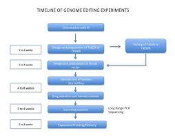 Genome Editing Home Human Genome Editing Core
