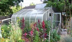 garden greenhouse. book cover,; greenhouse with open roof panel garden