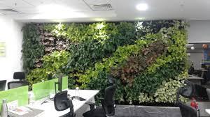 Vertical Garden|Green Wall Bangalore