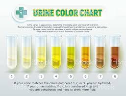 10 Urine Color Chart 1 Illustration Cat Urine Color Chart