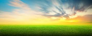 grass field sunset. Green Grass Field Sunset. Of And Sky F Sunset K