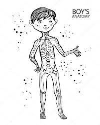 Du Dessin Anim Pour Enfants Mignon Petit Gar On Et Son Squelette L