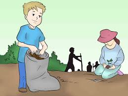 the role of every individual in keeping the surrounding clean  the role of every individual in keeping the surrounding clean