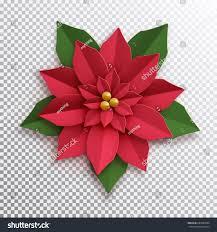 Weihnachtsstern Papierblume Poinsettia Rote Blume