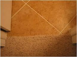 carpet tile transition strips charming light 18 best transition strip images on