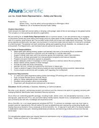Excellent Sales Representative Resume Template Example With