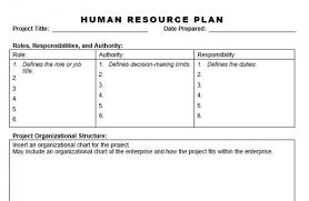 Human Resource Organizational Structure Chart Human Resource Plan Planning Engineer Est