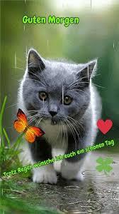 Wünsche Dir Einen Schönen Tag Mein Schatz Bilder Und Sprüche Für