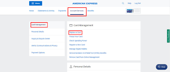American express lost card phone number. How To Get An Amex Replacement Card Without Calling Or Chatting