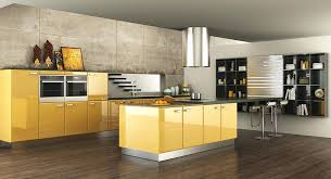 kitchen cabinet protectors beautiful modern elegant acrylic cupboard shelf liners ikea ki