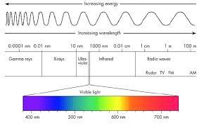 Diagram Of Light Get Rid Of Wiring Diagram Problem