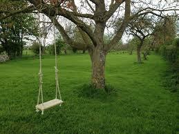 Tree Swing Traditional Garden Tree Swing 6 Steps